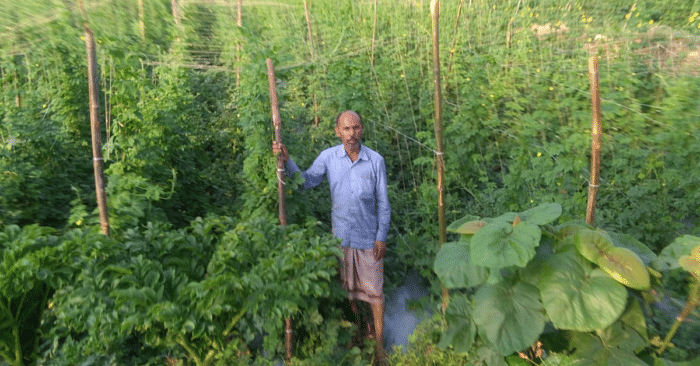 Rs 50/Day to Rs 50 Lakh/Year: Incredible Story of a Jharkhand Farmer With Barren Land