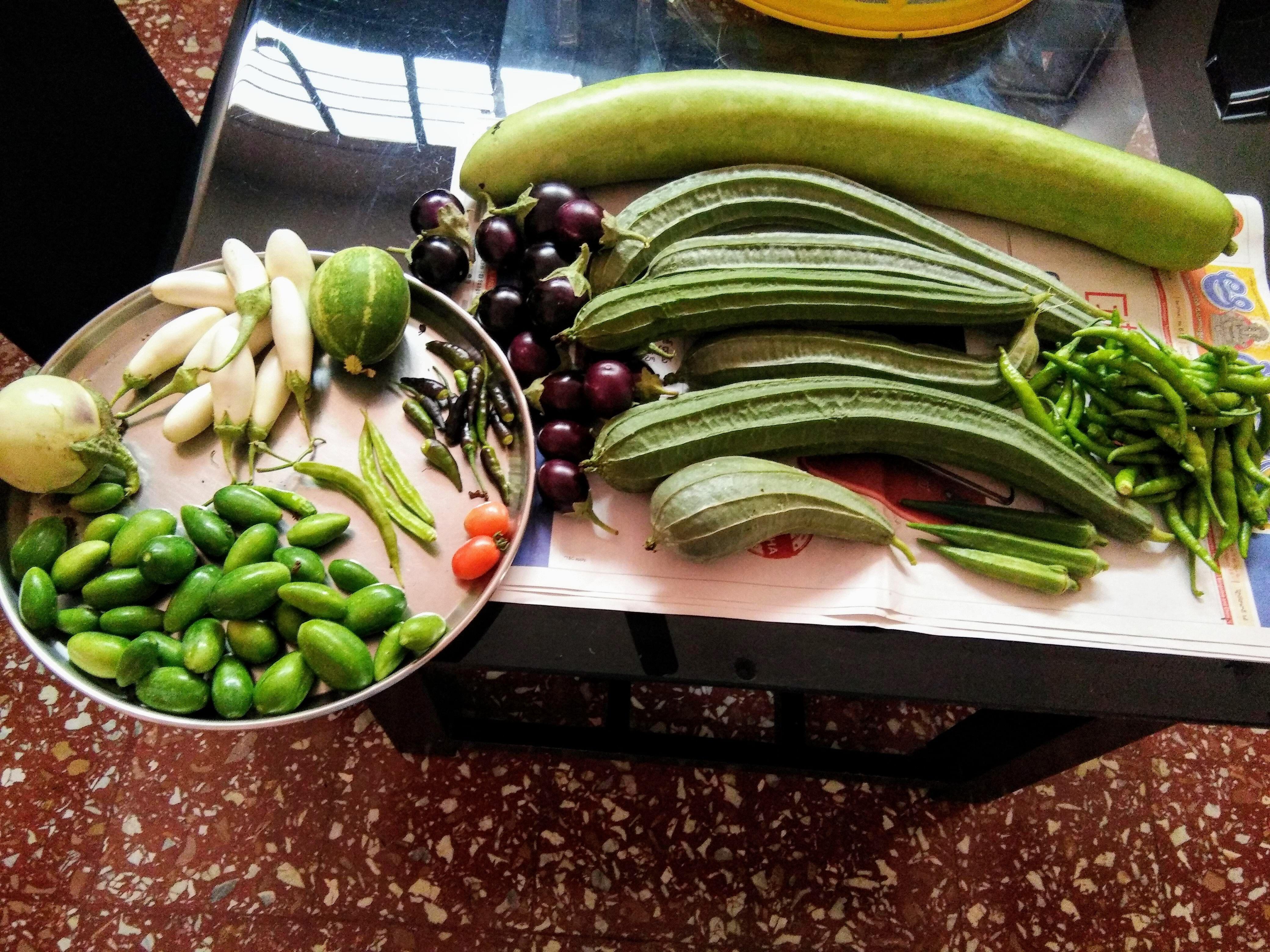 Hyderabad woman terrace garden tips neem grow organic vegetables India