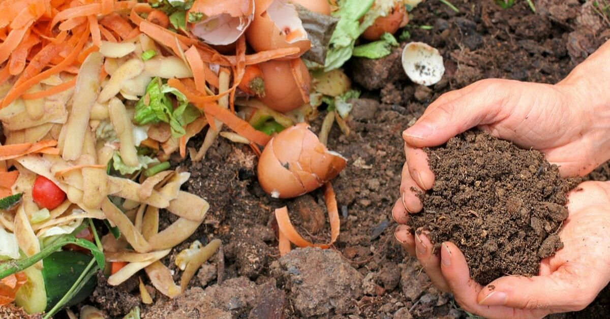 Transform Your Kitchen Waste into a Rich Compost for Just Rs 600!