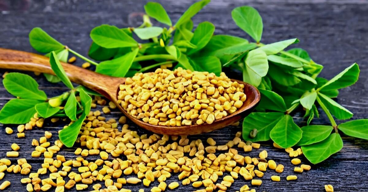 5 Ways to Use Fenugreek Seeds to Infuse Health into Your Skin, Hair & Body!