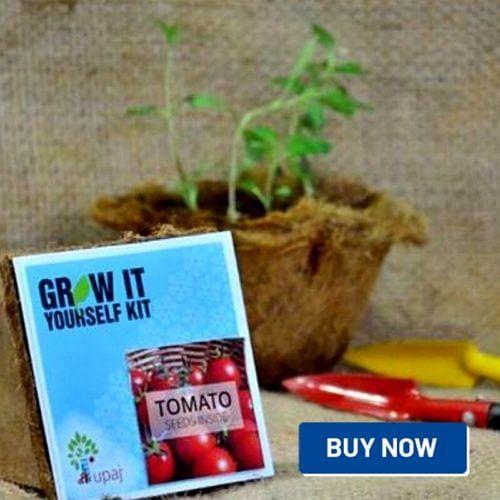 Upaj gardening kit