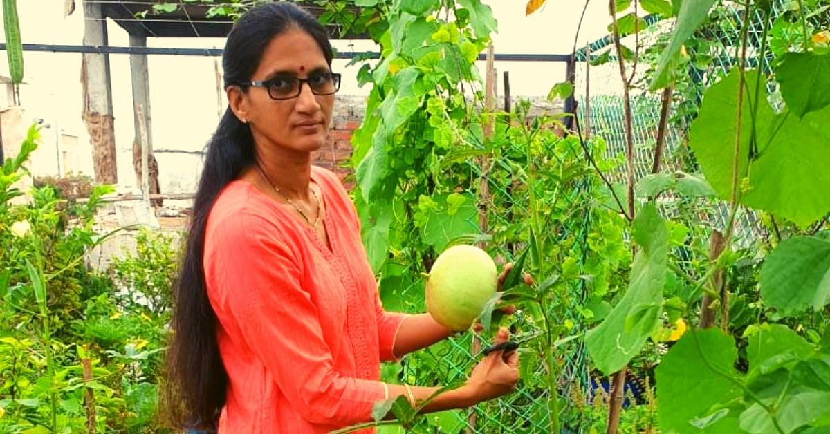 Andhra Lady Upcycles Waste Into Planters, Grows 30+ Veggies on Her Terrace