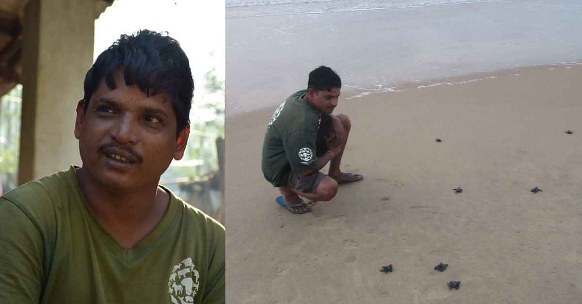 In 23 Years, This School Dropout from Odisha Has Saved Millions of Ridley Turtles