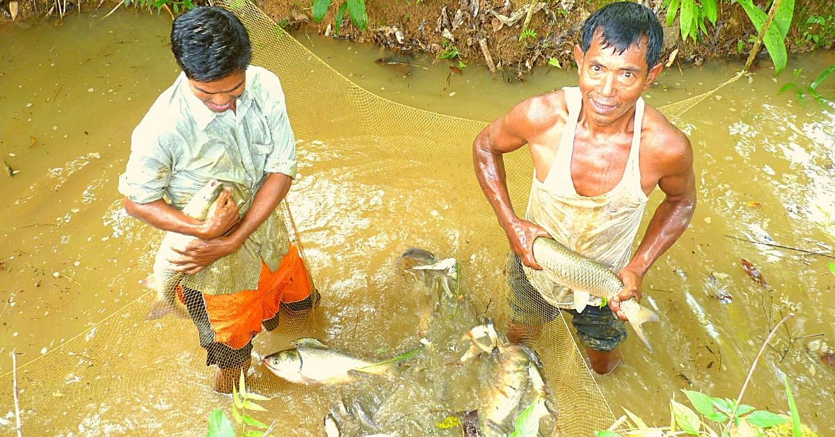 Meghalaya Govt Peon Builds Fish Ponds With His Hands, Sells 800kg of Fish/Year