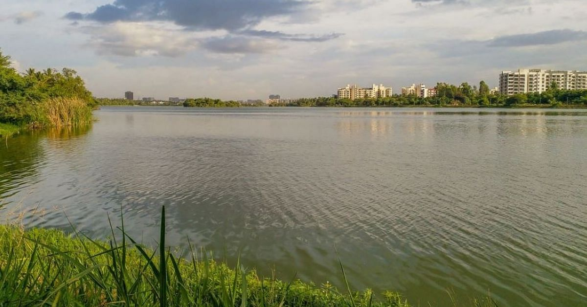 Wetlands, Human Hair & More: 5 Innovations By Indians That Curb Water Pollution!