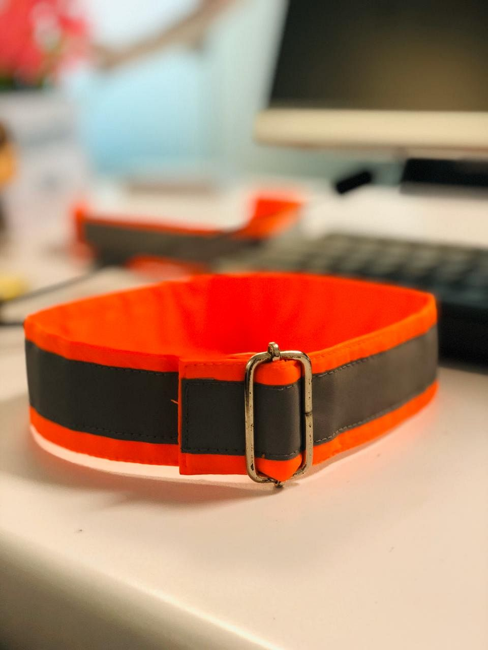 The new collar that Motopaws will launch on December 1. (Source: Shantanu Naidu)