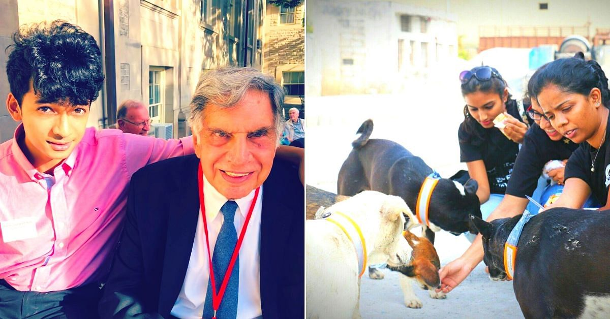 Pune Man's Innovation for Stray Dogs Impressed Ratan Tata, Got Him a Dream Job!