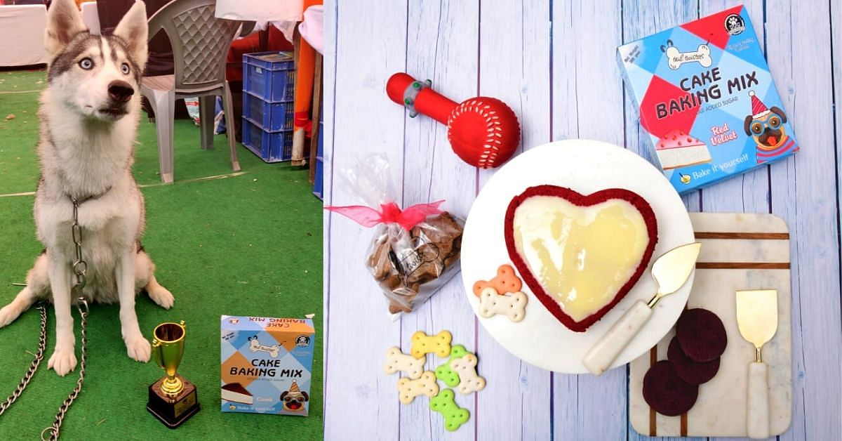 Need a Perfect Pet Treat? Check Out This Startup's Healthy & Tasty Canine Cakes