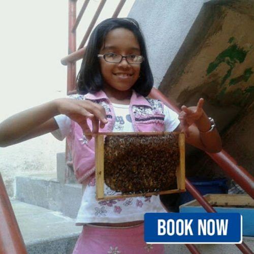 bengaluru bee keeping