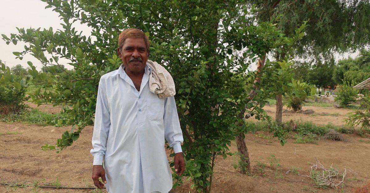 Rajasthan Tractor Driver Turns Organic Farmer in The Thar Desert, Earns 50% More!