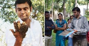 bengaluru bee keeping