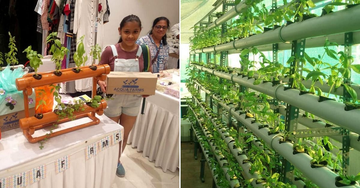 Chennai, Learn Hydroponics from Techie-Turned-Farmer Who Grows 6000 Plants!
