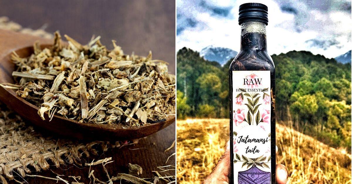 Jatamansi: The Secrets of This Himalayan Herb Will Make Your Hair & Skin Glow!