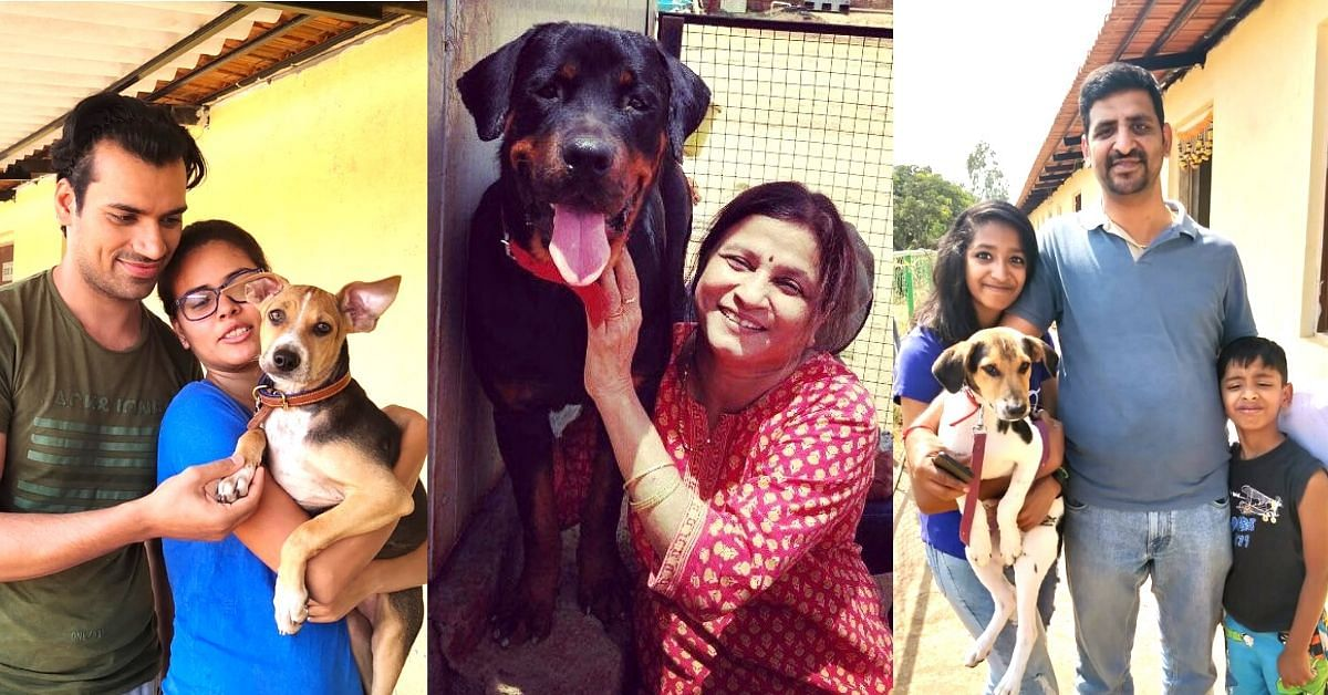 How to Adopt a Dog in India: 6 Steps to Follow