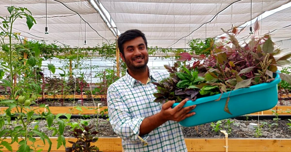 Bengaluru, Learn to Grow 30 Plants in Just 4 Square Feet of Space This Weekend!