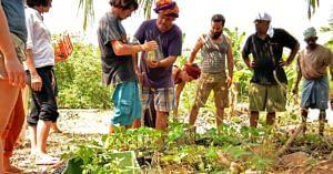 auroville organic farming workshop