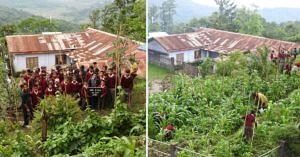 Nagaland school organic farming