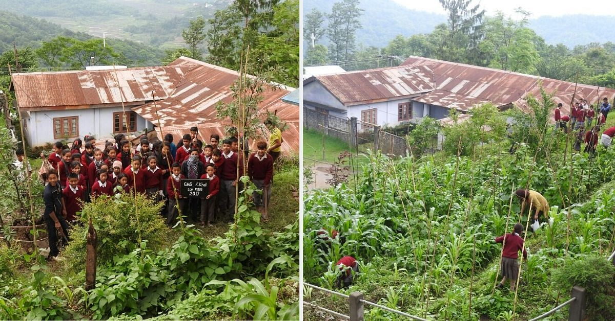 Nagaland School Kids Grow Their Own Organic Mid-Day Meals, Inspire Whole Village