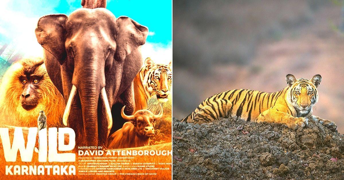 Wild Karnataka: India's Landmark Wildlife Documentary That Took 4 Years to Create