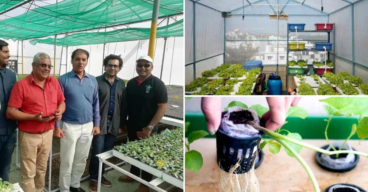 Expert Answers: Ex-Navy Commander Tells Us How to Grow a Hydroponics Farm