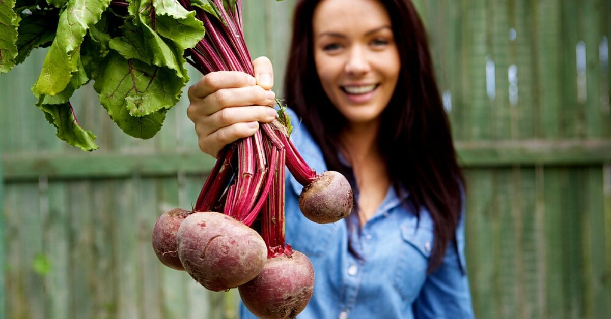 Bring Back the Beet (Root): Here's Why & How You Add It to Your Diet