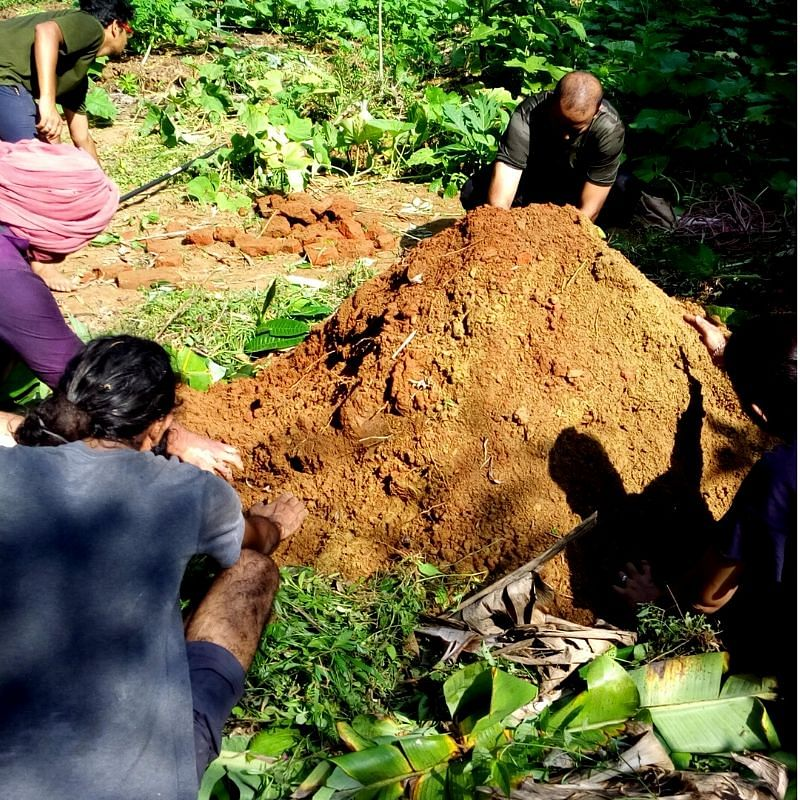 auroville permaculture workshop
