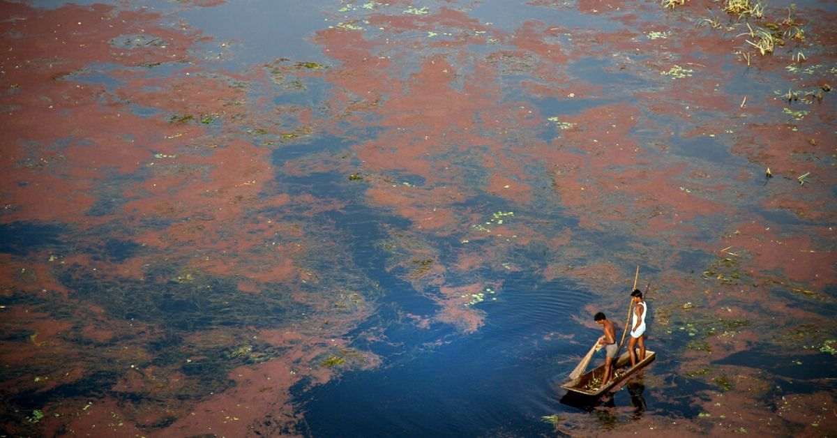 Detergents Add 1.46 Lakh Tons of Phosphate to India's Waters Yearly. This Has to Stop