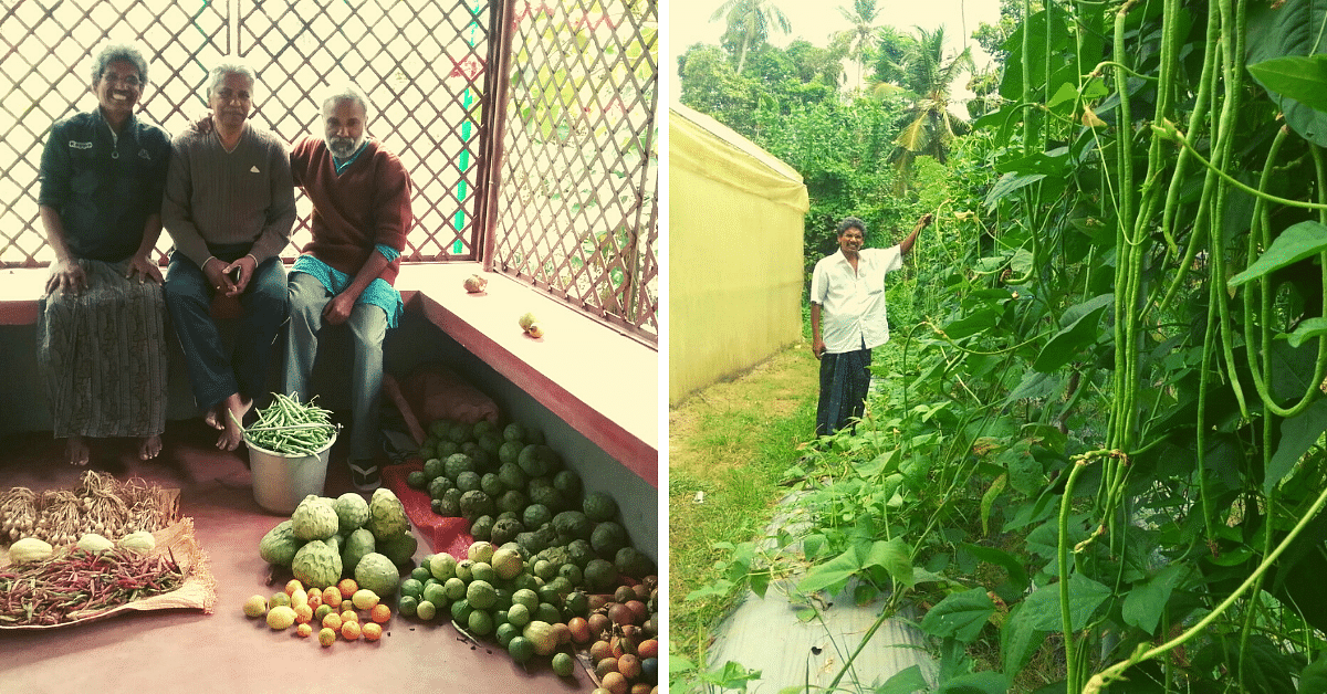 Here's How This Kerala Engineer Grows 26 Types of Veggies In Just 60 Sq Ft Space!