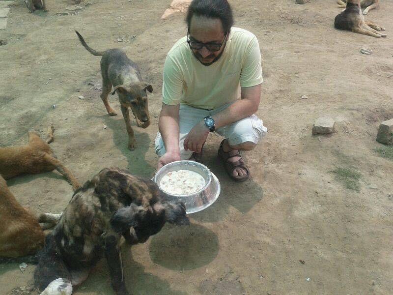 delhi stray dogs covid-19 lockdown
