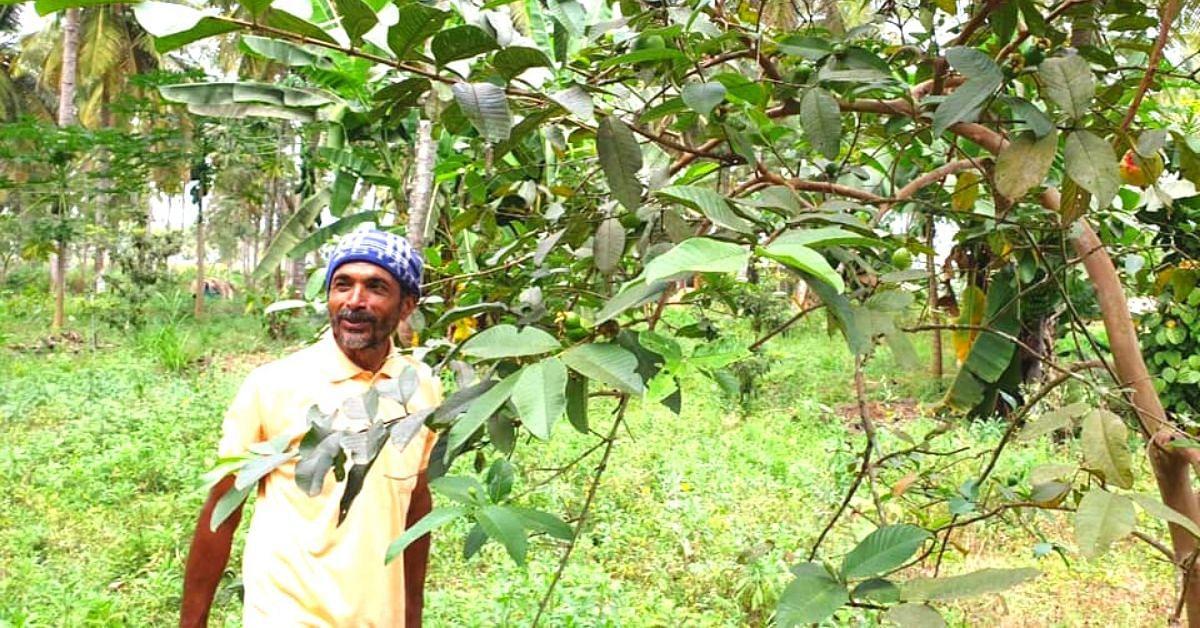 300 Plant Varieties in 1 Acre Increases Mysuru Farmer's Profits to 10 Lakhs!
