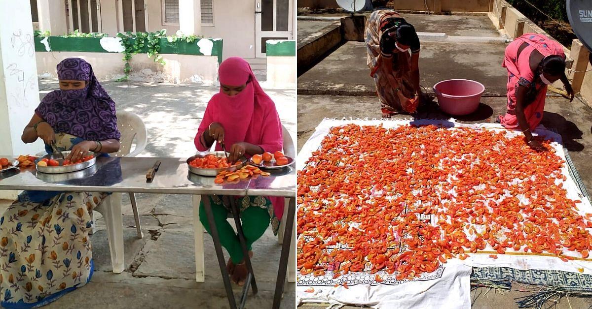 kolar tomato preservation