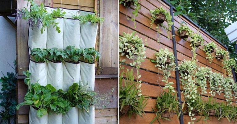 Got a Small Space? 6 Ways You Can Easily Grow a Lush Vertical Garden