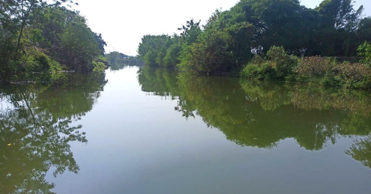 A vila de Maharashtra economiza 1400000000 litros de água, cultiva cana-de-açúcar após 40 anos 2