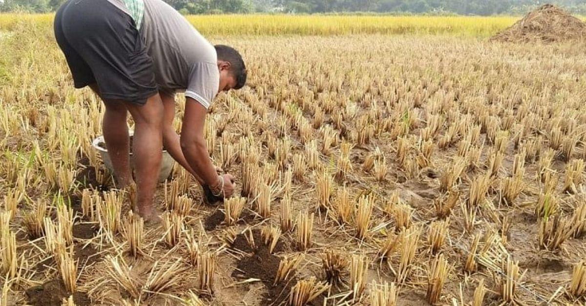 Idisha Farmer's Idea economiza 80% de água, evita a queima de restolho 3