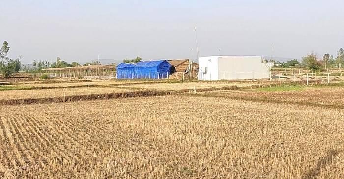 Satinder's 1.5 Acre Farm in Uttarakhand, where he grows Mushroom