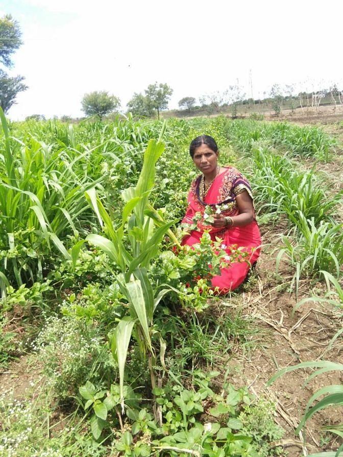 Santoshi Survase in her farm (2)