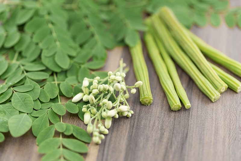 Moringa leaves for high BP. Its Leaves, flowers & Fruits all are edible.
