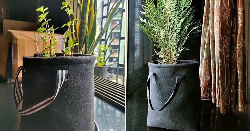 Grow bags made from recycled plastic bottles