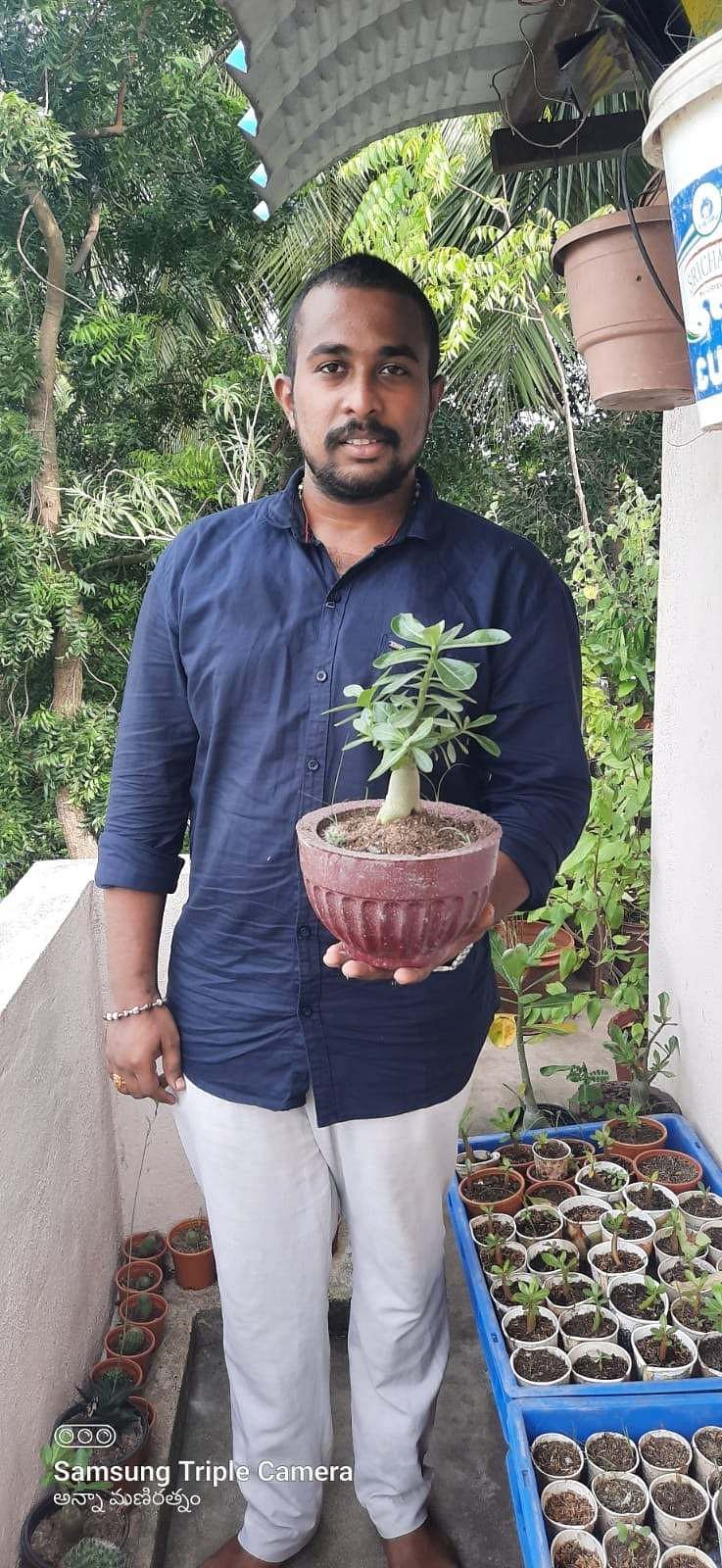 Plants at home - Anna Mani Ratnam with Bonsai Plant